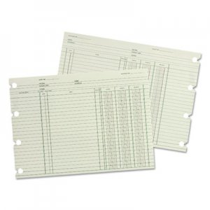 Wilson Jones GN2B Accounting, 9-1/4 x 11-7/8, 100 Loose Sheets/Pack WLJGN2B WGN2BA
