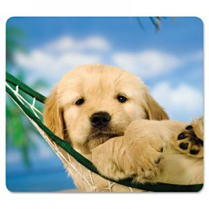 Fellowes 5913901 Recycled Mouse Pad, Nonskid Base, 7 1/2 x 9, Puppy in Hammock FEL5913901
