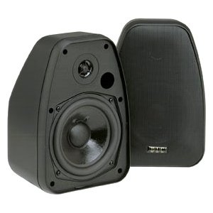 BIC America ADATTODV-52SIB Indoor/Outdoor Speaker