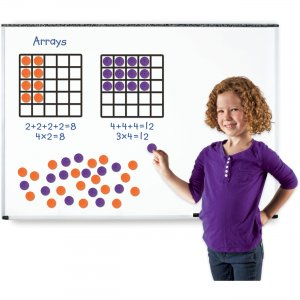 Learning Resources 6648 Giant Magnetic Array Set