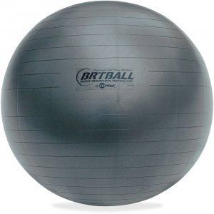 Champion Sports BRT53 Gray Training/Exercise Ball