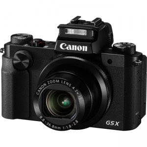 Canon 0510C001 PowerShot X Bridge Camera G5