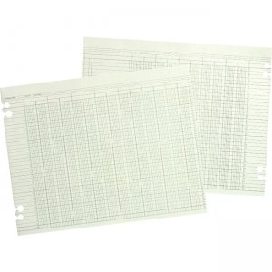 Wilson Jones WG10-16 Columnar Ruled Sheet WLJG1016