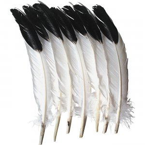 Creativity Street AC4512 Imitation Eagle Feathers PACAC4512