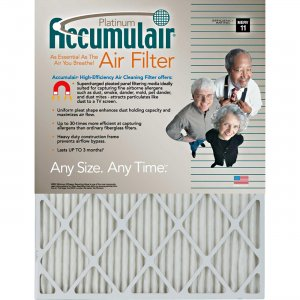 Accumulair FA20X22A4 Platinum Air Filter FLNFA20X22A4