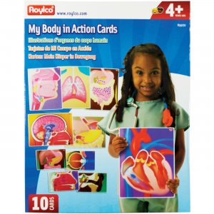 Roylco R59270 My Body In Action Animation Cards RYLR59270